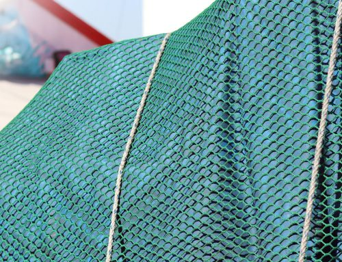 Choosing the Right Cargo Netting for the Job